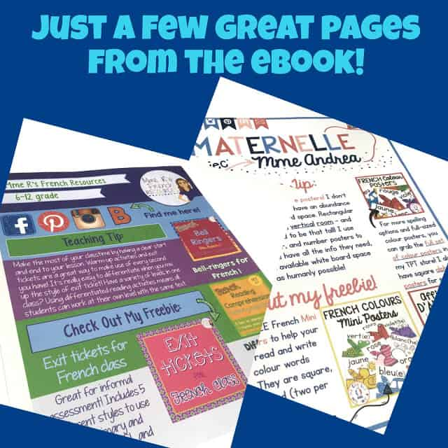 French eBook full of tips and freebies for k-12 French immersion, core, and FSL classes.