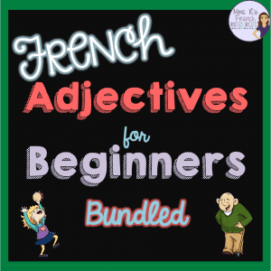 French-adjectives-unit